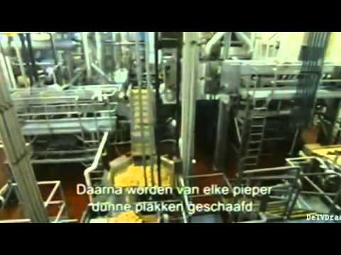 Frito Lay Chips Factory 2