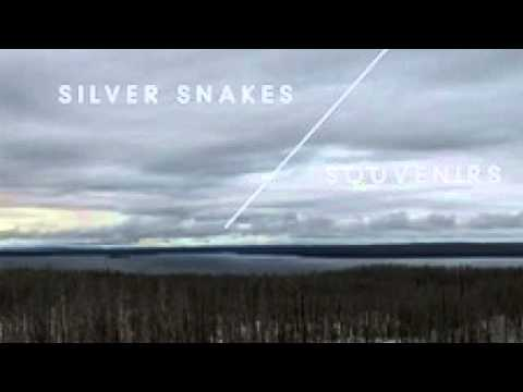 Silver Snakes - Secare