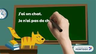Ranskan artikkelit, osa 2