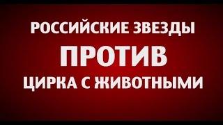Российские звёзды против цирка с животными - 1