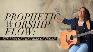 LION OF JUDAH,HE WILL HAVE HIS WAY -prophetic worship