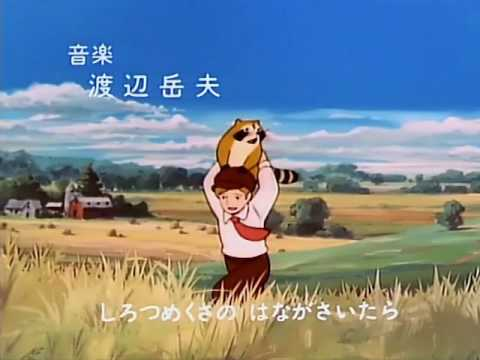 Kumiko Osugi - Opening Rascal, el mapache