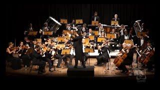 Orquestra Sinfônica completa 30 anos em 2017