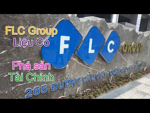 Tập đoàn FLC Có Nguy Cơ Phá Sản Tài Chính - Bamboo Airways