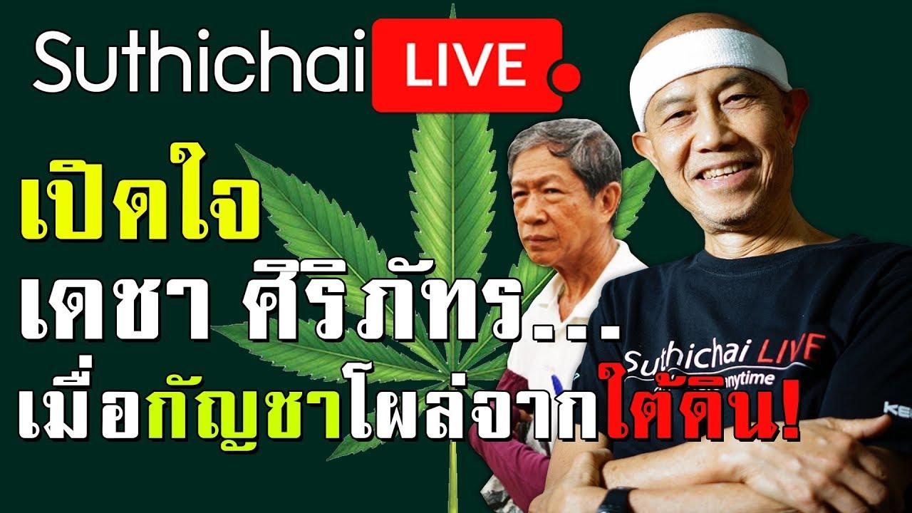 Suthichai live : เปิดใจเดชา ศิริภัทร...เมื่อกัญชาโผล่จากใต้ดิน! 15/04/2562