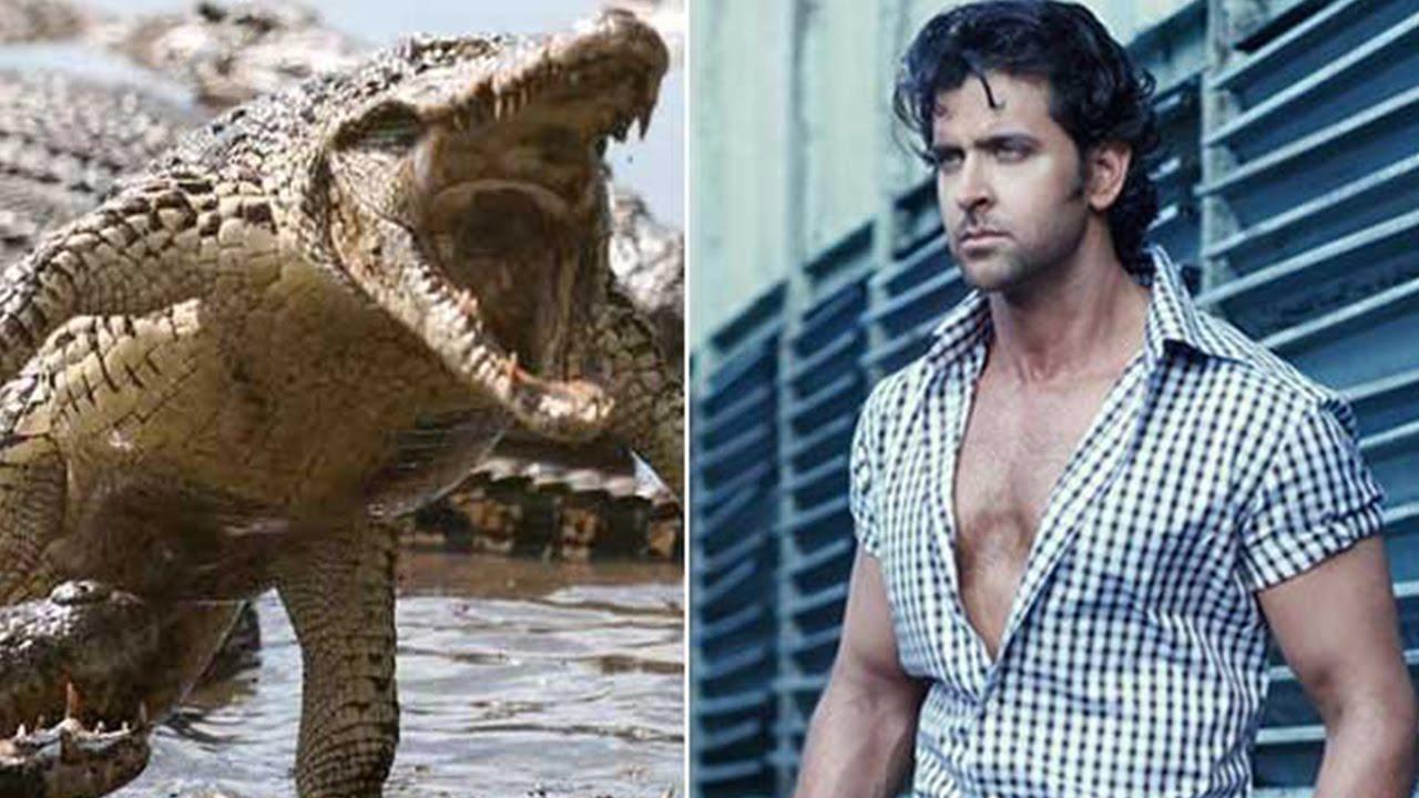 Search crocodile full movie - GenYoutube