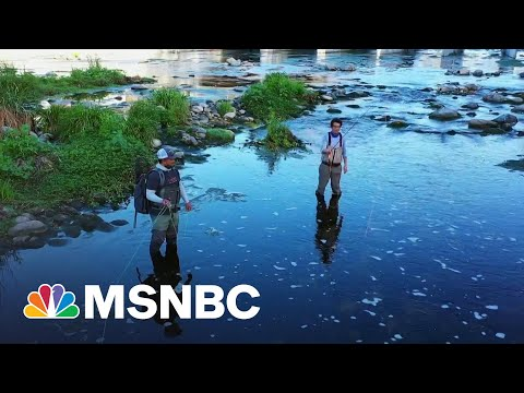 Los Angeles Races To Avoid A 'Megadrought' | Morning Joe | MSNBC