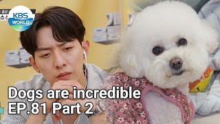 Dogs are incredible EP.81 Part 2 | KBS WORLD TV 210623