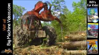 Logging Trees Construction Video
