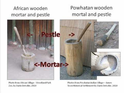 Jamestown: Powhatan Indian Agriculture