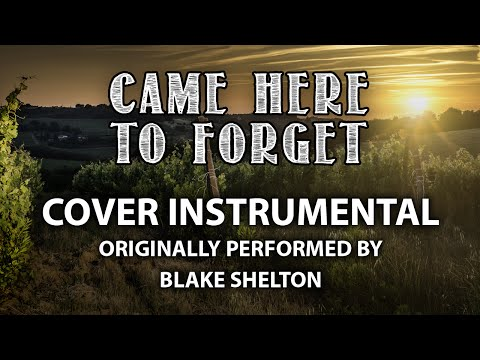 Came Here To Forget (Cover Instrumental) [In the Style of ARTIST]