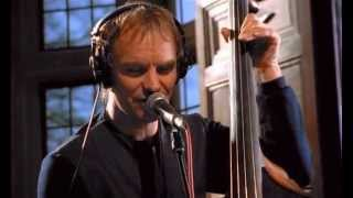 STING She`s Too Good For Me