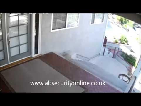 Bulldog doing a great job! CCTV