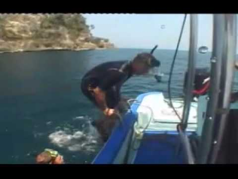 Scandinavian divers at shark cave  - Big Lalaguna Beach - Puerto Galera - Philippines