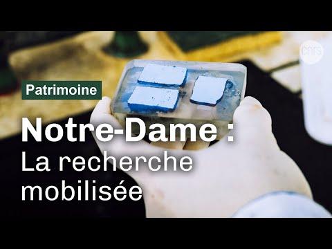 En 2020, la recherche à l'ouvrage pour Notre-Dame