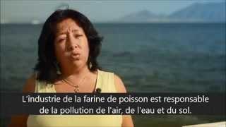 L'industrie de la farine de poisson au Pérou