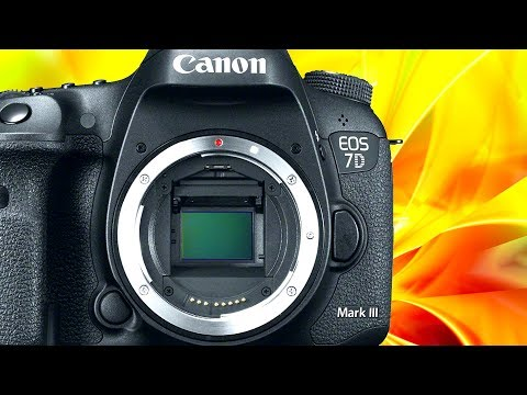 Canon 6D Mark II vs Canon 7D Mark III - Should I WAIT for the 7D3 or Buy the 6D2?