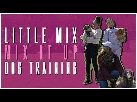 Little Mix - Mix It Up: Dog Training