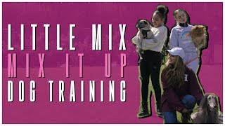 Little Mix - Mix It Up: Dog Training
