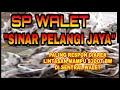Sp Walet Sinar Pelangi Jaya Paling Respon Diarea Lintasan  Mp3 - Mp4 Download