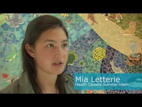 Health Careers Summer Internship