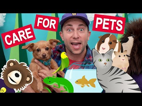 Teaching Kids to Care for Pets | Videos for Toddlers