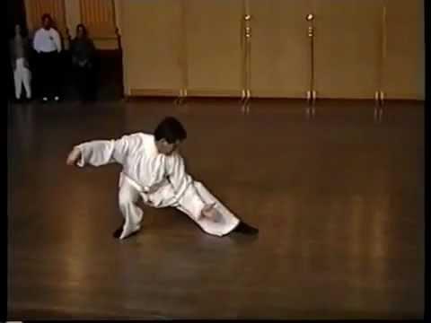Master Kai Ying Tung performing Tai Chi Chuan traditionel ya