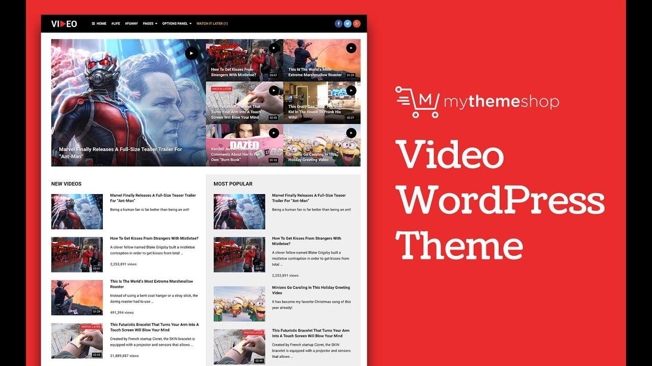 Best Video WordPress Theme