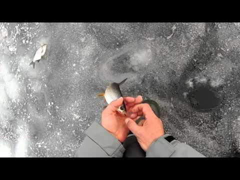 гирлянда для ловли синца зимой