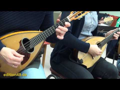 Stitches Shawn Mendes Mandolin orchestra cover instrumental Zupforchester