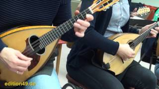 Stitches Shawn Mendes Mandolin orchestra cover instrumental Zupforchester