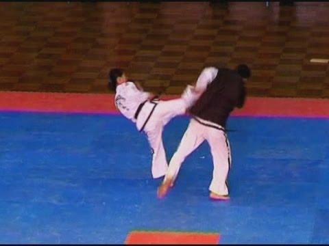 INCREDIBLE Martial arts masters at the Taekwondo World