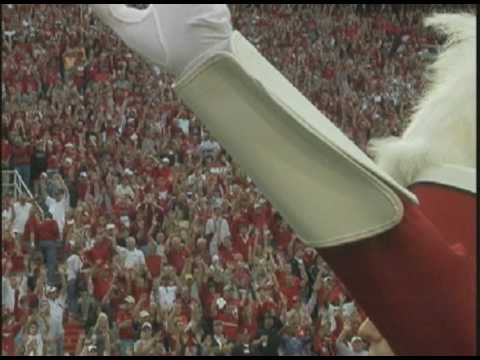 Feature on Razorback wide receiver Greg Childs