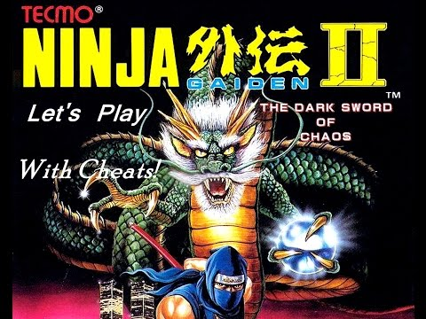 ninja gaiden 2 nes cheats game genie