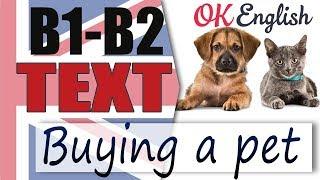 Buying a Pet - Покупка домашнего питомца