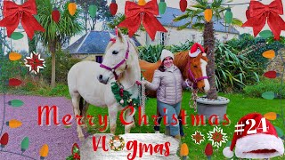 070 ~ [VLOGMAS] ~ MERRY CHRISTMAS !