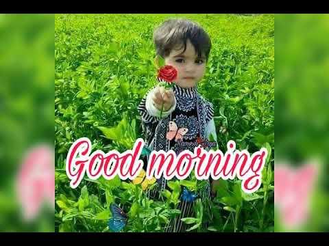 O SANAM SANAM RE GOOD MORNING SONG