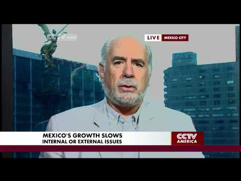 Oscar Ugarteche Discusses the Economy of Mexico