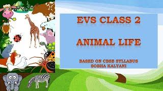 Class 2 EVS  Animal Life