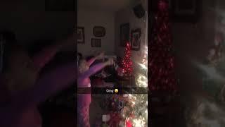Funny Christmas tree fail