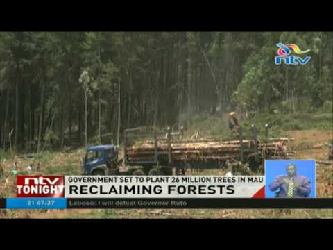 Government set to plant 26 million trees in Mau Forest