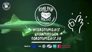 Road Trip Project / Danube Delta: fighting to save the Danube Dinosaur! thumbnail