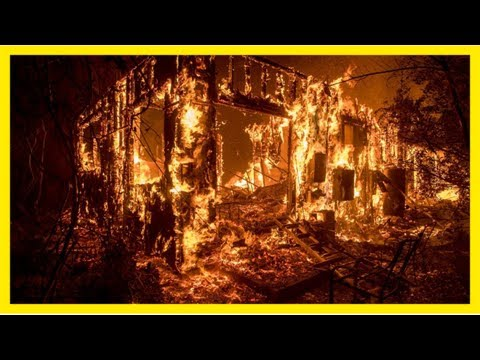 Waldbrände in kalifornien: starke winde fachen die flammen an