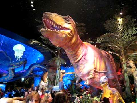 T rex restaurant in downtown disney orlando fl youtube for Dining near at t park