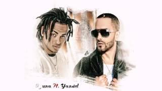 Yandel No Quiero Amored