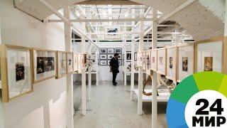Пропавшие шедевры: музеи страдают от похитителей картин - МИР 24