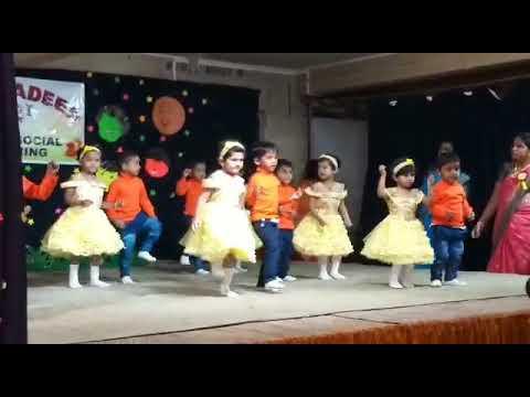 Hello hani bani dance