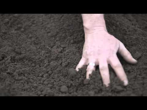 Haldern Pop Festival 2011 - Trailer No. 3 (Official)