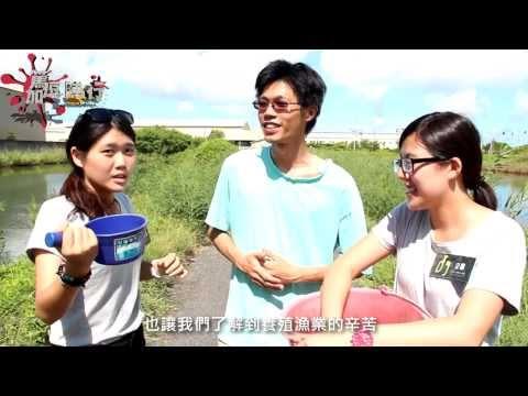 篤加逗陣行第六集:漁火協力部落餵魚體驗 - YouTube