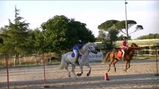 Trofeo dei Tre Mari   Bari   Finale; Blue Flash